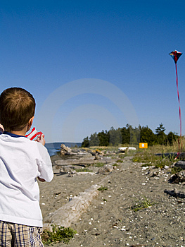 Kite-flying-thumb5878846